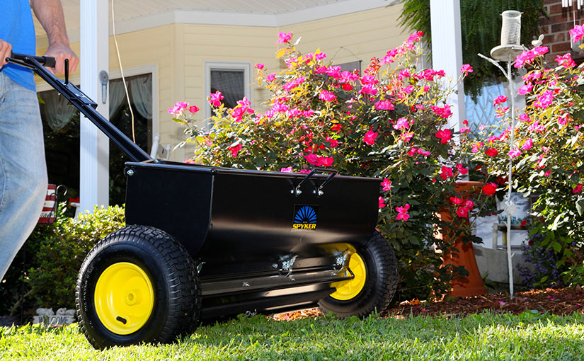 best way to topdress your lawn